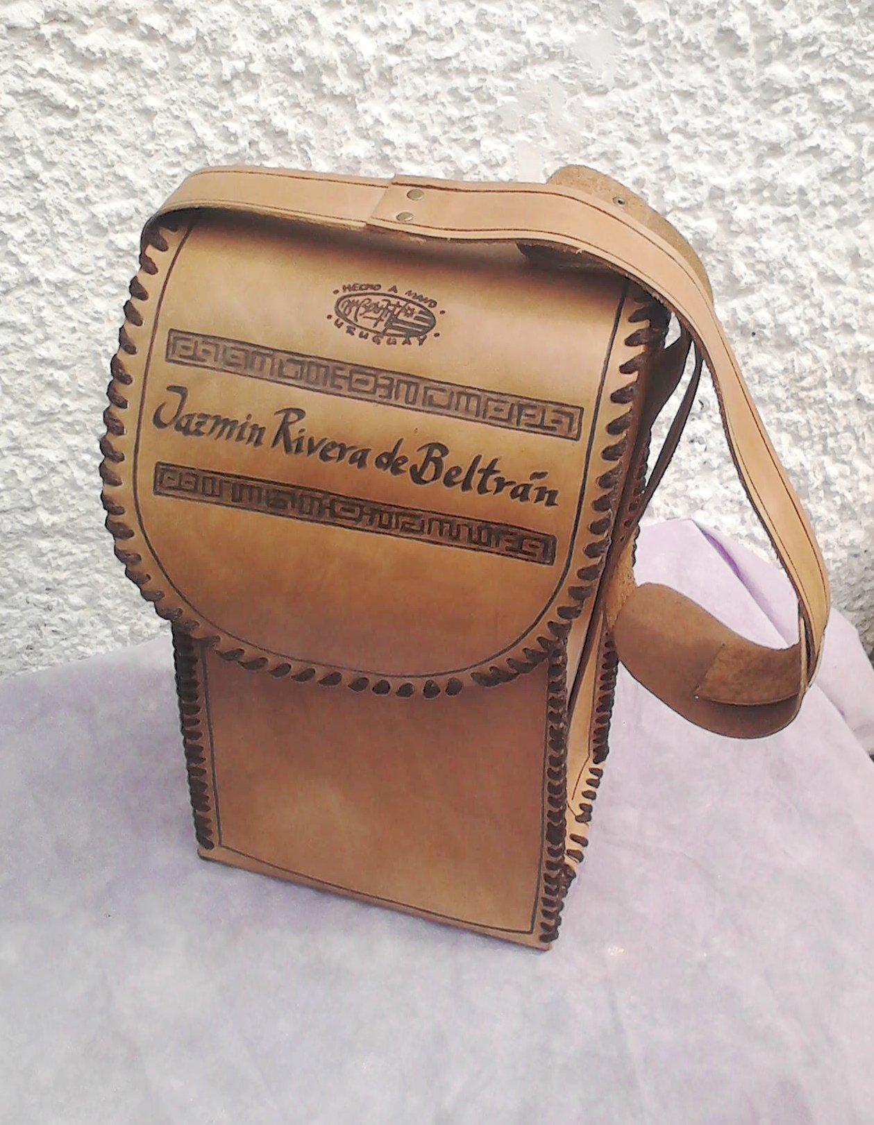 Bolso/Carrier